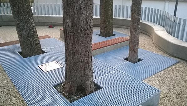 socle protection arbre